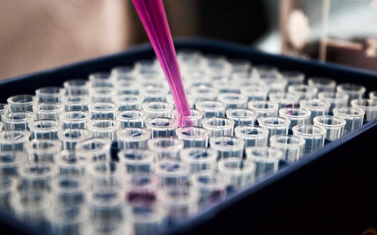 biochimica_e_biologia_molecolare_per_farmacia_1542014184.png