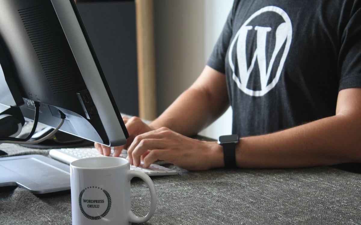 wordpress-la-guida-base-completa-allo-sviluppo-1572953804782.jpg